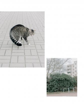 http://jakobschnetz.de/files/gimgs/th-71_spiegel_12.jpg